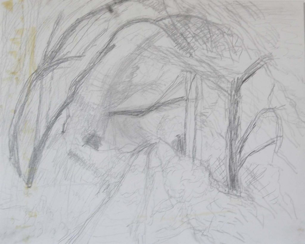 Mary Burke down the pathway-pencil