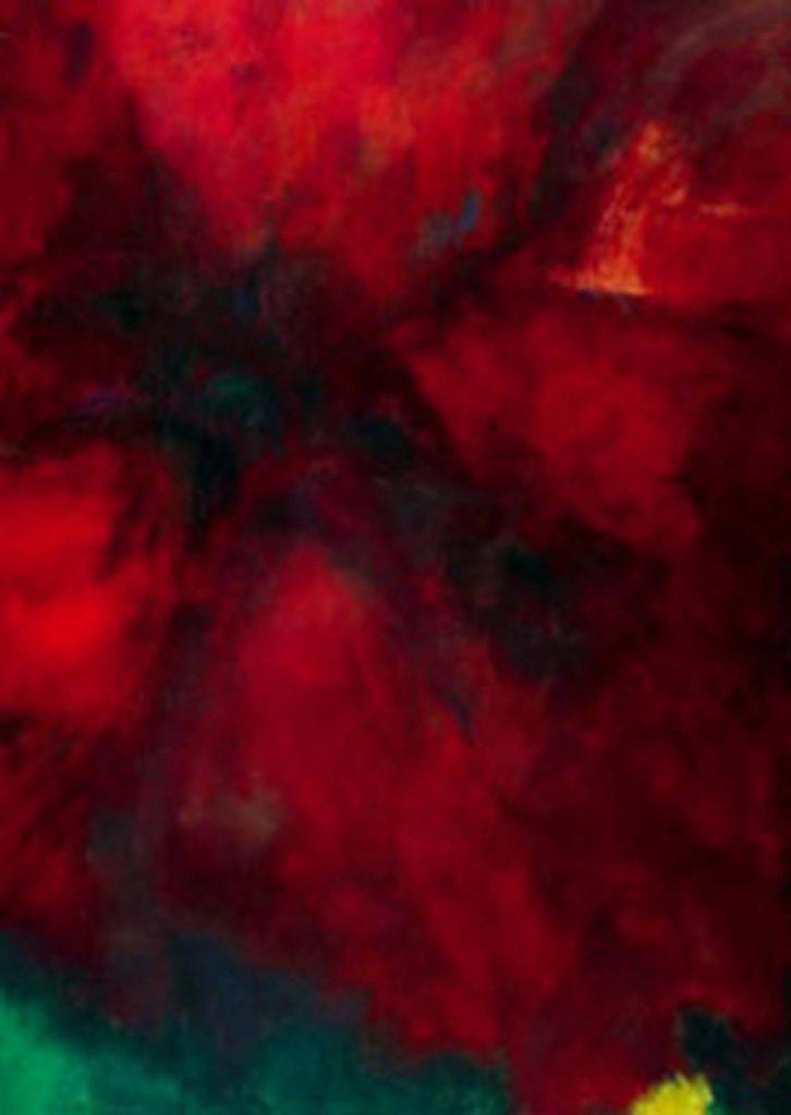 mariska de May-flower closeup